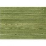 مدل کاغذ دیواری سبز, کاغذ دیواری سبز روشن, کاغذ دیواری سبز تیره, کاغذ دیواری سبز, کاغذ دیواری زمینه سبز, کاتالوگ کاغذ دیواری, عکس کاغذ دیواری سبز, طرح کاغذ دیواری سبز, آلبوم کاغذ دیواری سبز, آلبوم کاغذ دیواری | %da%a9%d8%a7%d8%aa%d8%a7%d9%84%d9%88%da%af-%d9%88-%d8%a2%d9%84%d8%a8%d9%88%d9%85-%da%a9%d8%a7%d8%ba%d8%b0-%d8%af%db%8c%d9%88%d8%a7%d8%b1%db%8c, %d8%b9%da%a9%d8%b3-%da%a9%d8%a7%d8%ba%d8%b0-%d8%af%db%8c%d9%88%d8%a7%d8%b1%db%8c, %d8%b7%d8%b1%d8%ad-%d9%88-%d9%85%d8%af%d9%84-%da%a9%d8%a7%d8%ba%d8%b0-%d8%af%db%8c%d9%88%d8%a7%d8%b1%db%8c | دکوراسیون ساختمان دکوروز