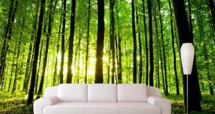 کاغذ دیواری مدرن, کاغذ دیواری پوستری, کاغذ دیواری با طرح کاشی, کاغذ دیواری با طرح چوب | %da%a9%d8%a7%d8%ba%d8%b0-%d8%af%db%8c%d9%88%d8%a7%d8%b1%db%8c-%d9%be%d9%88%d8%b3%d8%aa%d8%b1%db%8c, %da%a9%d8%a7%d8%ba%d8%b0-%d8%af%db%8c%d9%88%d8%a7%d8%b1%db%8c, %d8%b9%da%a9%d8%b3-%da%a9%d8%a7%d8%ba%d8%b0-%d8%af%db%8c%d9%88%d8%a7%d8%b1%db%8c, %d8%af%da%a9%d9%88%d8%b1%d8%a7%d8%b3%db%8c%d9%88%d9%86-%da%a9%d8%a7%d8%ba%d8%b0-%d8%af%db%8c%d9%88%d8%a7%d8%b1%db%8c, %d8%a7%d9%86%d9%88%d8%a7%d8%b9-%da%a9%d8%a7%d8%ba%d8%b0-%d8%af%db%8c%d9%88%d8%a7%d8%b1%db%8c | دکوراسیون ساختمان دکوروز