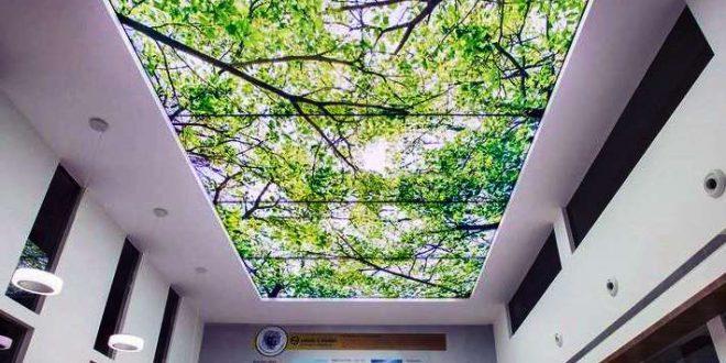 نصب آسمان مجازی در اراک, قیمت آسمان مجازی در اراک, سقف آسمان مجازی در اراک, چاپ آسمان مجازی در اراک, آسمان مجازی سرویس بهداشتی در اراک, آسمان مجازی در اراک, آسمان مجازی آشپزخانه اراک | %d8%a2%d8%b3%d9%85%d8%a7%d9%86-%d9%85%d8%ac%d8%a7%d8%b2%db%8c, %d8%a2%d8%b3%d9%85%d8%a7%d9%86-%d9%85%d8%ac%d8%a7%d8%b2%db%8c-%d8%a7%d8%b1%d8%a7%da%a9 | دکوراسیون ساختمان دکوروز