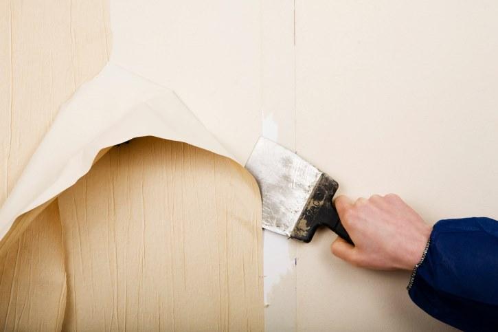 کندن کاغذ دیواری, کاغذ دیواری, جدا کردن کاغذ دیواری | %d9%86%d8%b5%d8%a8-%da%a9%d8%a7%d8%ba%d8%b0-%d8%af%db%8c%d9%88%d8%a7%d8%b1%db%8c, %da%a9%d8%a7%d8%ba%d8%b0-%d8%af%db%8c%d9%88%d8%a7%d8%b1%db%8c | کاغذ دیواری دکوروز